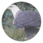 Standing American Bald Eagle Dinner Plate