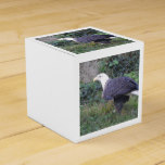Standing American Bald Eagle Favor Box