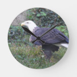 Standing American Bald Eagle Round Clock