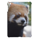 Sweet Red Panda Bear Cover For The iPad Mini