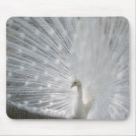 White Peacock Mouse Pad