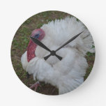 White Turkey Round Clock