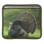 Wild Turkey iPad Sleeve