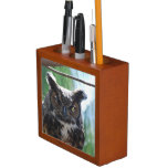 Wise Long Eared Owl Desk Organizer